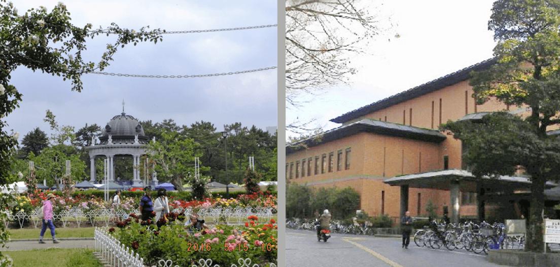 Tsurumai Park/Library