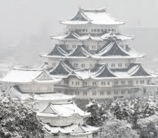 Winter Nagoya Castle